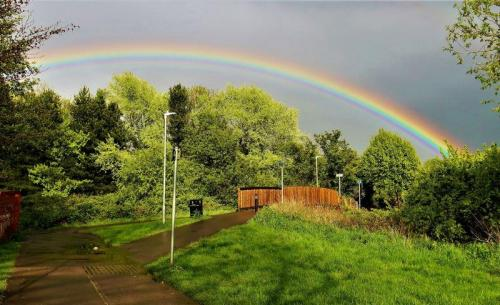 Newtown Rainbow-17-800-600-80